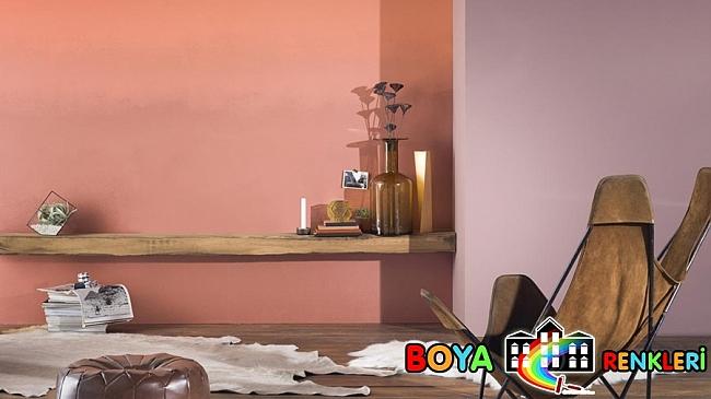2016 Duvar Boyası Renkleri Somon Rengi Duvar Boyası